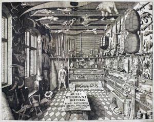 La wunderkammer seicentesca del fisico e antiquario danese Ole Worm