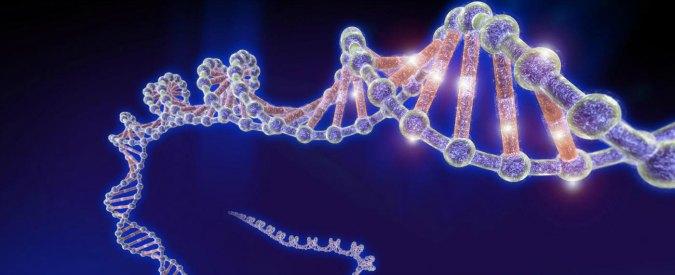 La mutazione genetica
