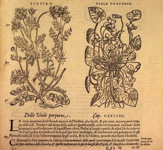 L'Arte Farmaceutica nella Magna Grecia – Recensione a cura di Viviana Donato