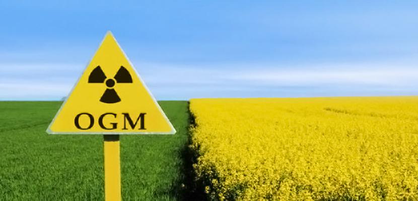 Glifosato, Agrotossici, sementi Ogm. Le vere armi di distruzione di massa – Roberto Pecchioli