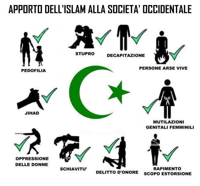 Immigrazione, islam, terrorismo – Fabio Calabrese