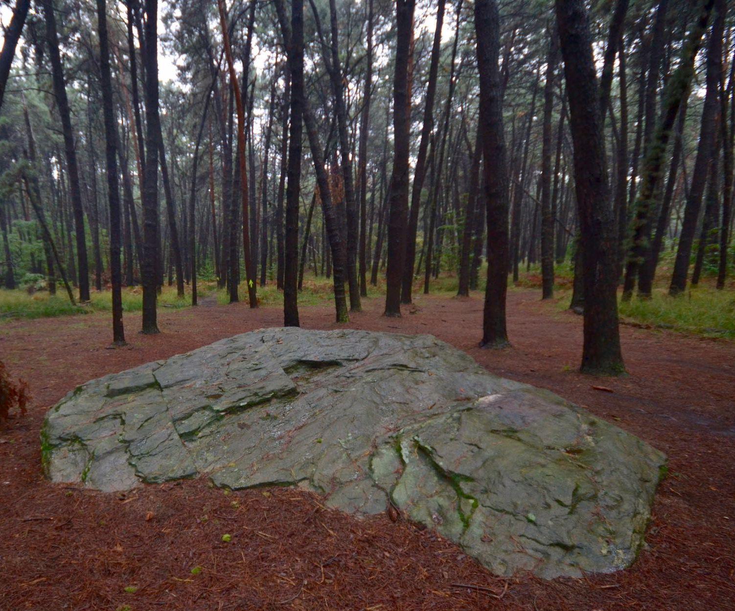 Strade d'Europa – Il comprensorio archeologico del Monsorino – Gruppo Escursionistico A.T.P.