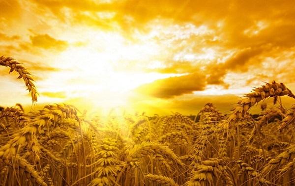 Dietro il velo del Tempo: il fascino sacro della circolarità temporale – Stefano Mayorca