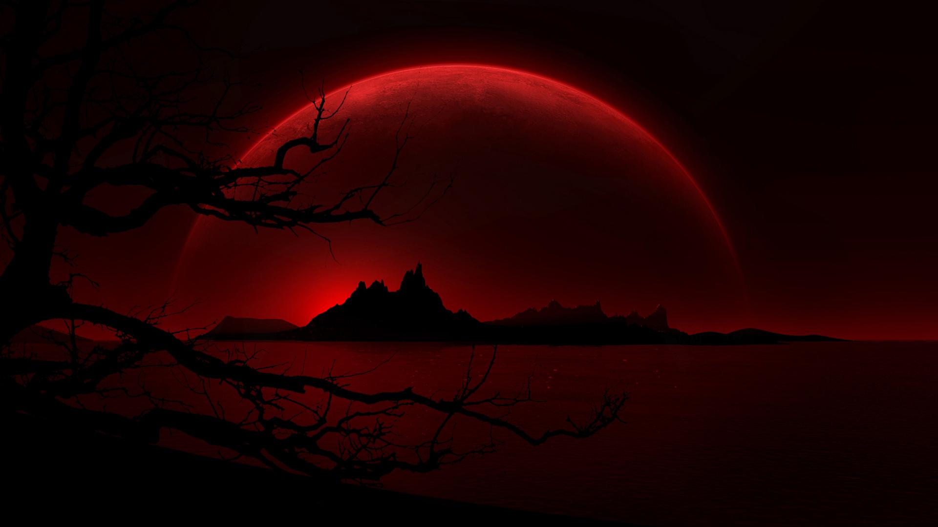 Dal sangue sbagliato – Michela Zanarella ©