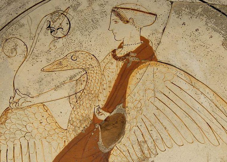 Le simbologie esoteriche del cigno e dell'oca – Emanuele Franz