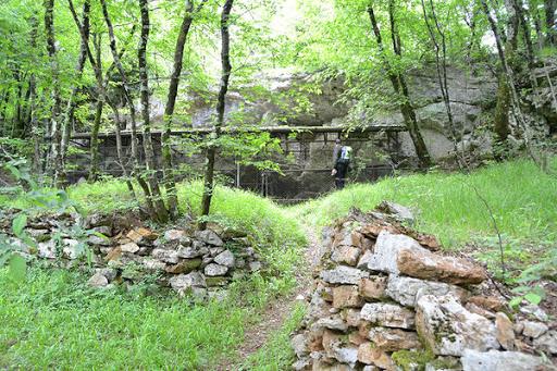 L'eredità degli antenati, venticinquesima parte – Fabio Calabrese