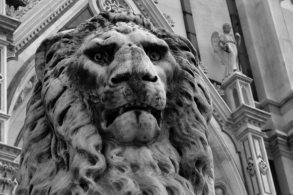 Dal leone delle caverne al leone da tastiera – Rita Remagnino